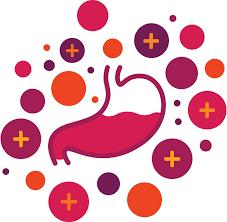 integrazione probiotica